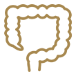 Colonoscopia ou Endoscopia Digestiva Baixa