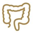 Pólipos Intestinais
